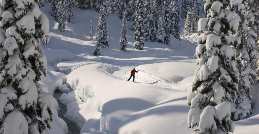 cross country ski whistler